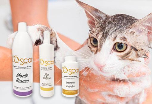 Banner promozionale Oscar di Smagatto, linea professionale cosmesi e igiene per gatti e cani