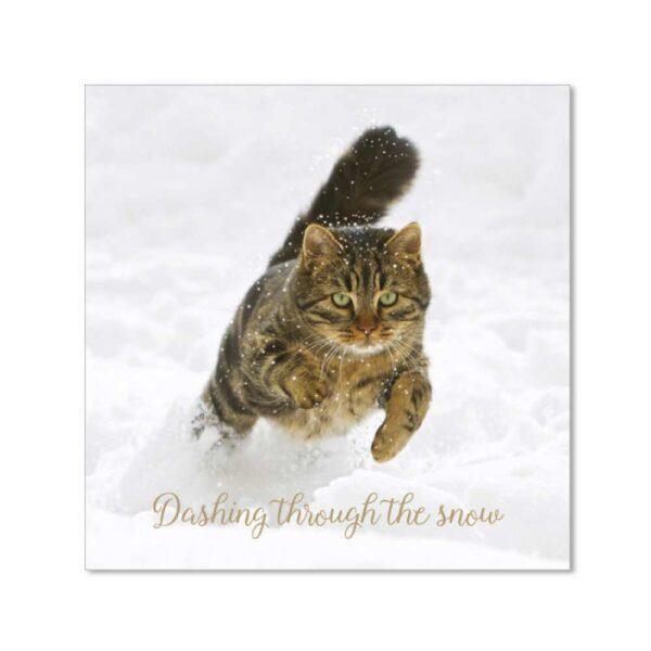 Biglietto di Natale con gatto che corre in mezzo alla neve