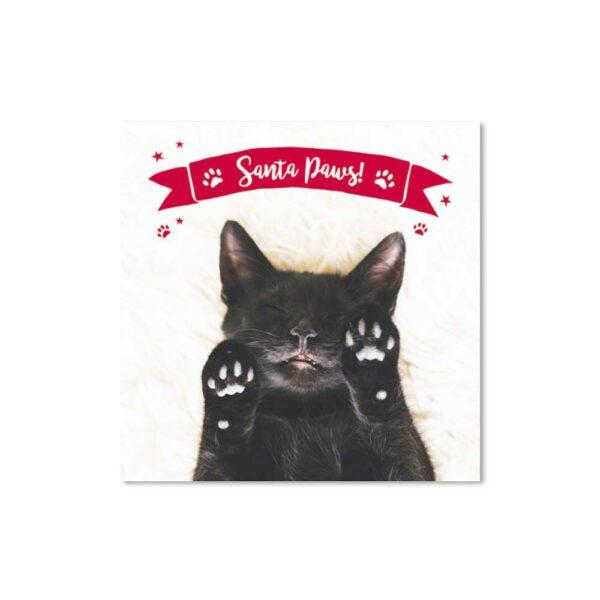 """Biglietto di Natale con gatto e scritta """"Santa Paws"""""""