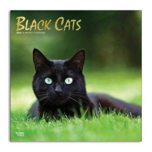 Fronte calendario gatti neri 2020