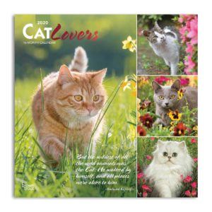 Fronte calendario cat lovers 2020