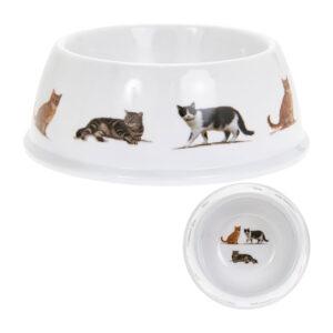 Ciotola bianca con gatti