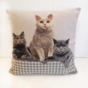 Cuscino Jacquard con tre fratelli gatti